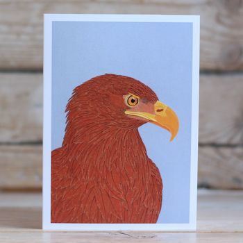 Sea Eagle Greeting Card