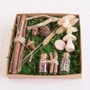 Woodland Fairy Garden Kit