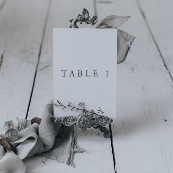 Willow Table Number And Name Cards