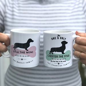 Dachshund Dog Owners Mug And Tableware