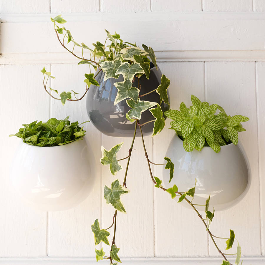Ceramic Wall Hanging Plant Pot By Lilac Coast
