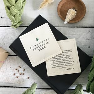 Grow Your Own Christmas Tree Seed Packet - wedding favours