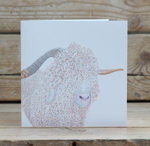 Angora Goat Card