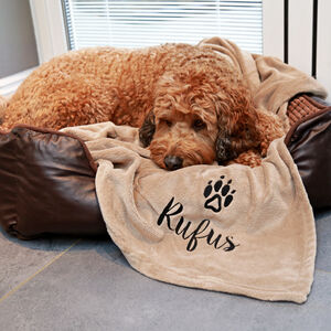 Personalised Luxury Snuggle Dog Blanket