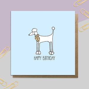 Birthday Poodle Card