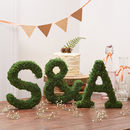 Moss Alphabet Letters And Ampersand Set