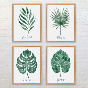 Botanical Leaf Print Collection - posters & prints