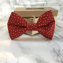 Starbright Christmas Dog Bow Tie