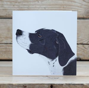 English Pointer Dog Card