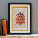 Personalised Ladybird Letter Print