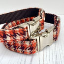 Boogie Harris Tweed Dog Collar