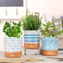 Personalised Home Gin Garden Planter Set