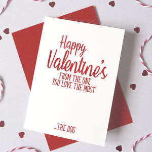 Personalised Fur Baby Valentine's Card From Dog/Cat - valentine's cards