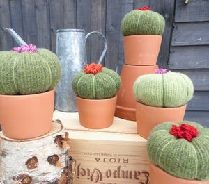Knitted Succulent House Plant Decoration