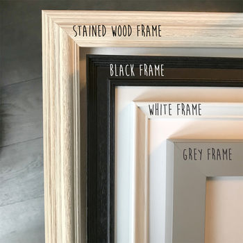 Frame Only With Mount Included