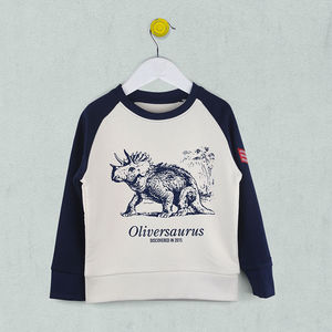 Personalised Dinosaur Sweatshirt - clothing