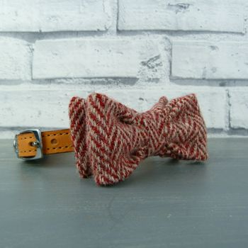 Red Harris Tweed Bow Tie For Dogs