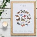 Butterflies Watercolour Print Unframed