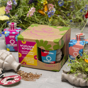 Wildflower Wonders Seedbom Gift Box - gifts for her
