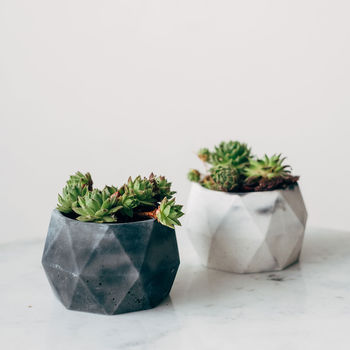 Geometric Marbled Monochrome Concrete Pots