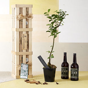 Grow Your Own Cider Gift - 30th birthday gifts