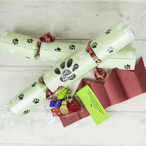 Christmas Cracker For Dogs - crackers
