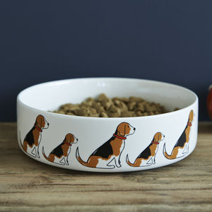 Beagle Dog Bowl - dogs