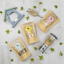 Bird Feeder Gift Box Flat Lay inc Props