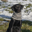 Woollen Snood For Dog