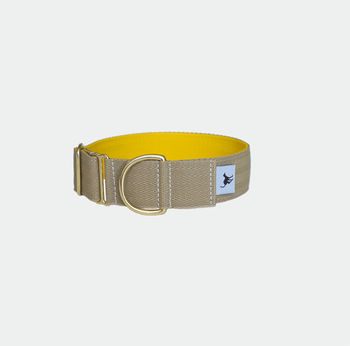 Atacama Hound And Dog Collar