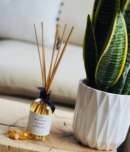 Revive Crystal Infused Citrine Quartz Reed Diffuser - home accessories
