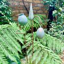 Three Flower Seedhead Garden Stakes