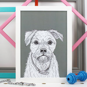 Border Terrier Print - pet portraits