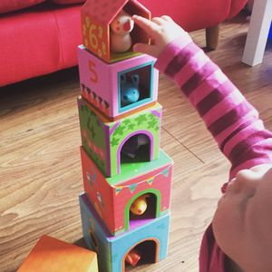 Stacking And Nesting Blocks With Animals - building blocks & stacking toys