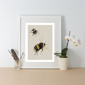 Bumblebees Illustration Print - drawings & illustrations