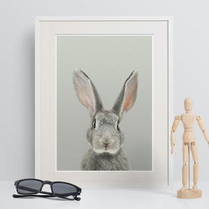 Baby's Room Peekaboo Grey Rabbit Animal Print - animals & wildlife