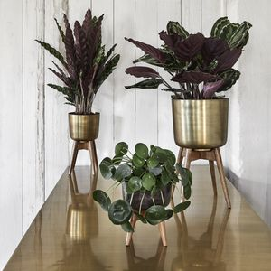 Brass Look/Wood Planter On Stand - pots & planters