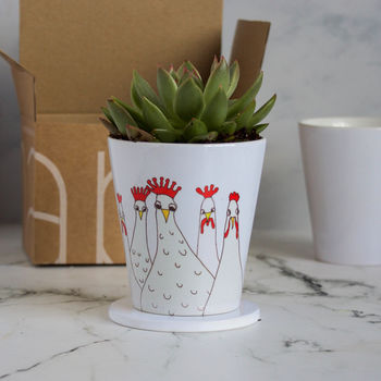 Personalised Crazy Chickens Plant Pot