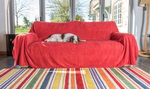 Perfect Cotton Towelling Sofa Throw By The Ruff And Tumble Dog Company Ltd |  Notonthehighstreet.com