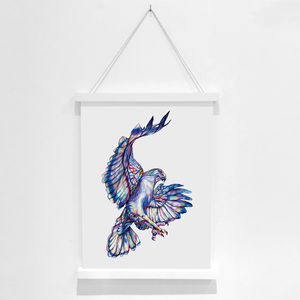 Hawk Pencil Illustration Fine Art Print - animals & wildlife