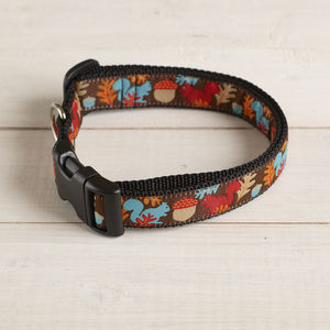 Mr Sells Squirrel Dog Collar - pets sale