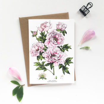Botanical Peony Greeting Card