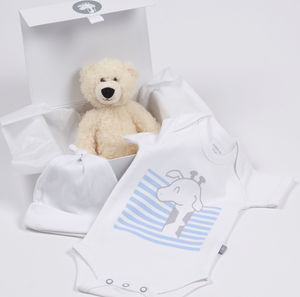 Baby Giraffe And Teddy Gift Box