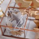 Handmade Star Shape Teabags