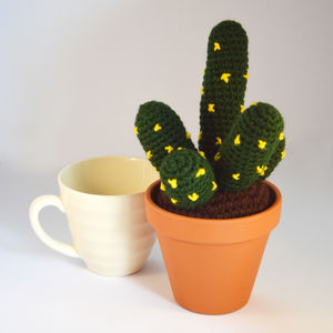 Crocheted Amigurumi Cactus - flowers, plants & vases