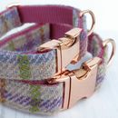 Dolly Rose Gold Harris Tweed Dog Collar