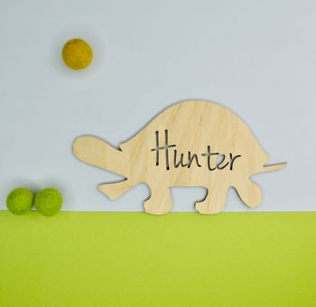 Personalised Turtle Bedroom Door Name Plaque