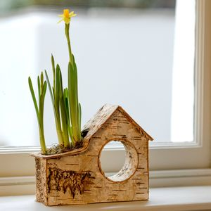 My Little Birch House Spring Bulb Planter - gifts for her