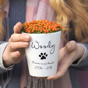 Personalised Pet Memorial Plant Pot Vase With Seeds