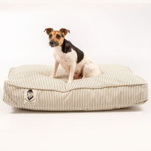 Dog Crate Cushion Bed - dogs